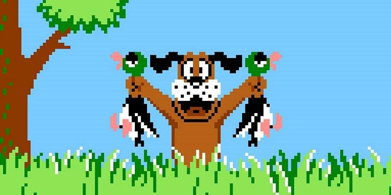 Duck Hunt Retro Game